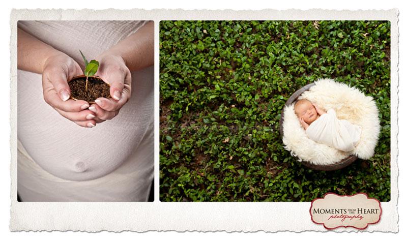 austin belly-to-baby | sandy allen