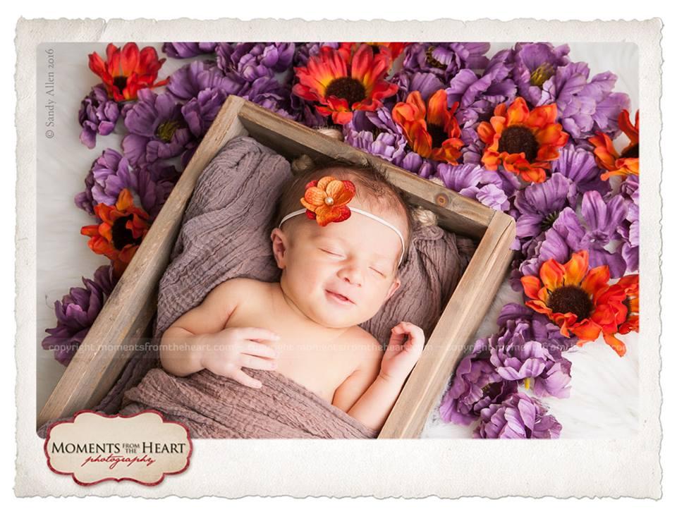 newborn austin photos - nine days of cute