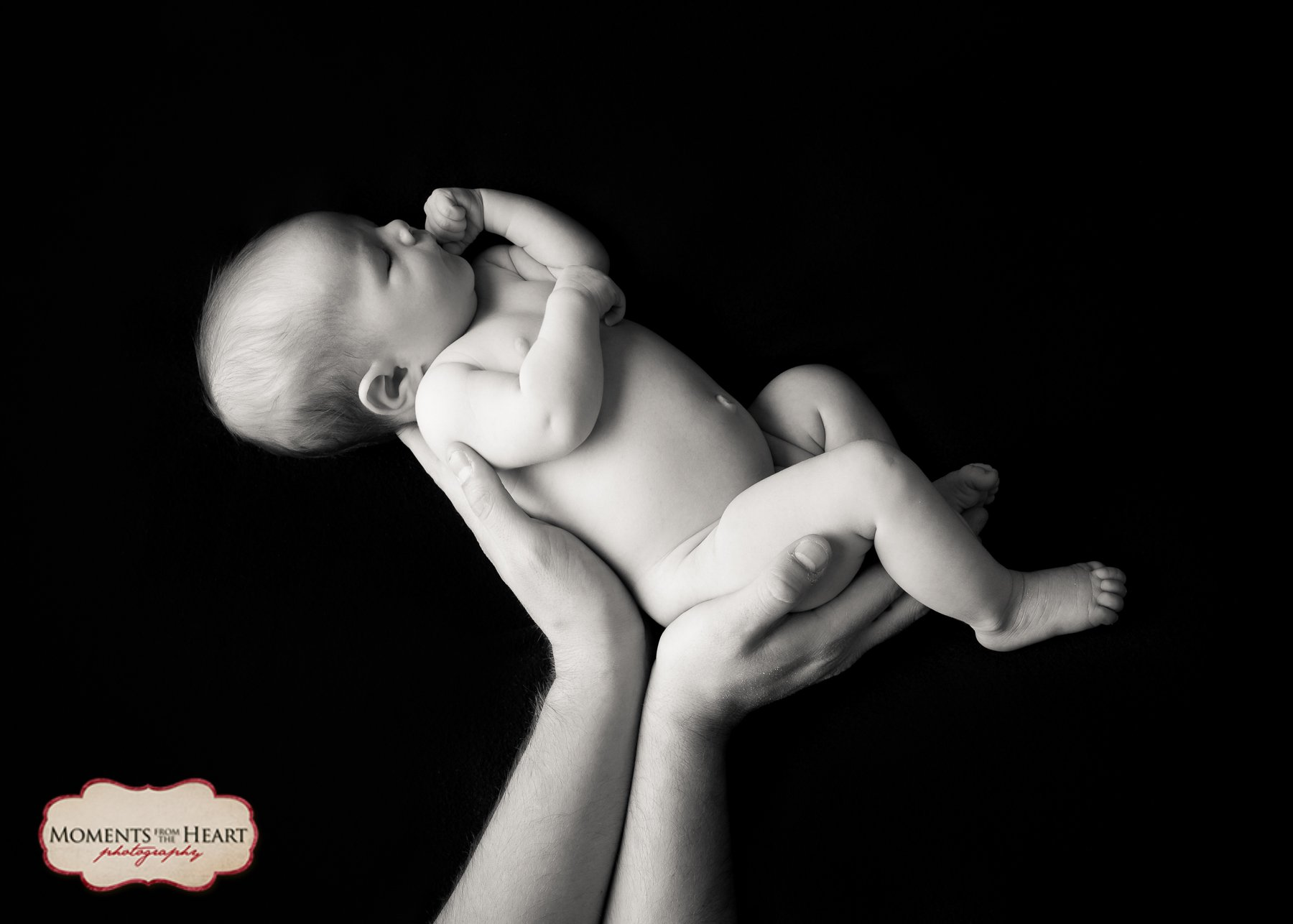 Dad and Newborn Studio Photography session - Dad lifting newborn ~ Austin, TX