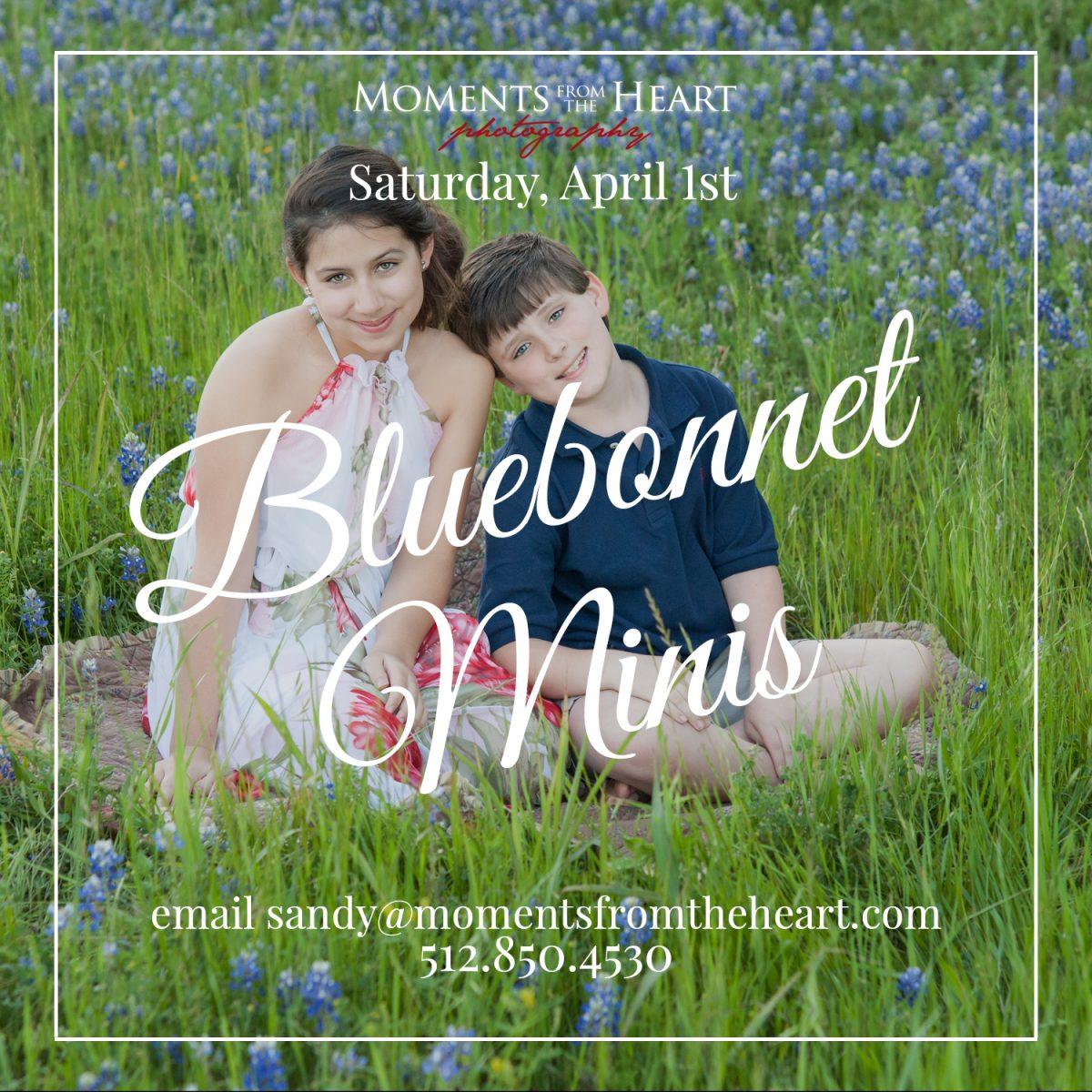 Bluebonnets2017