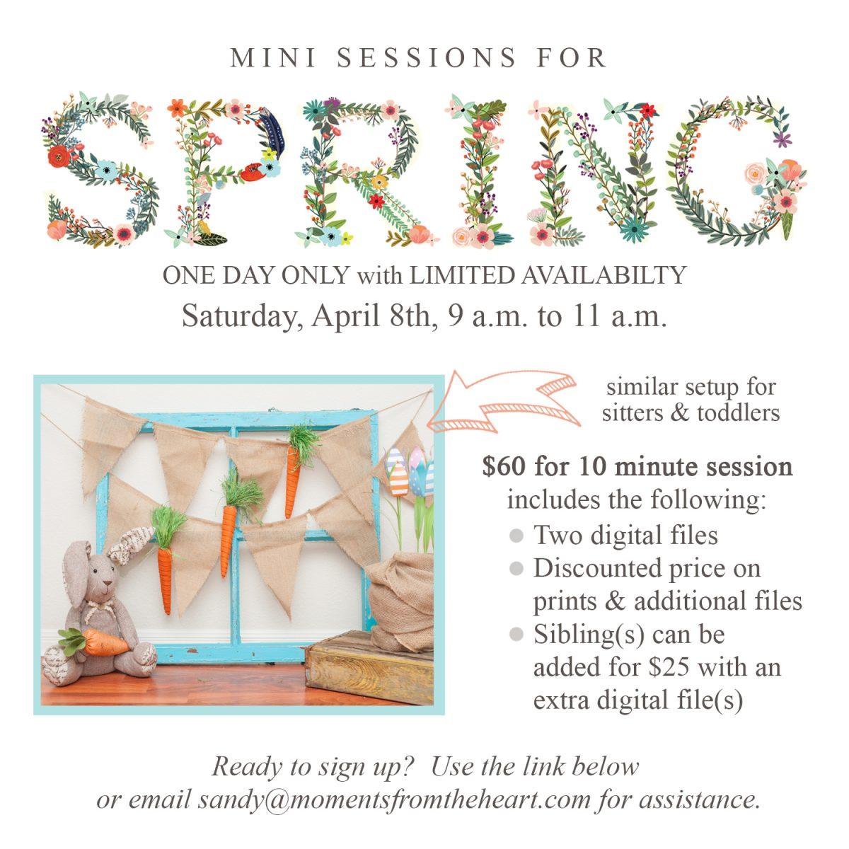 Spring Mini 2017-04