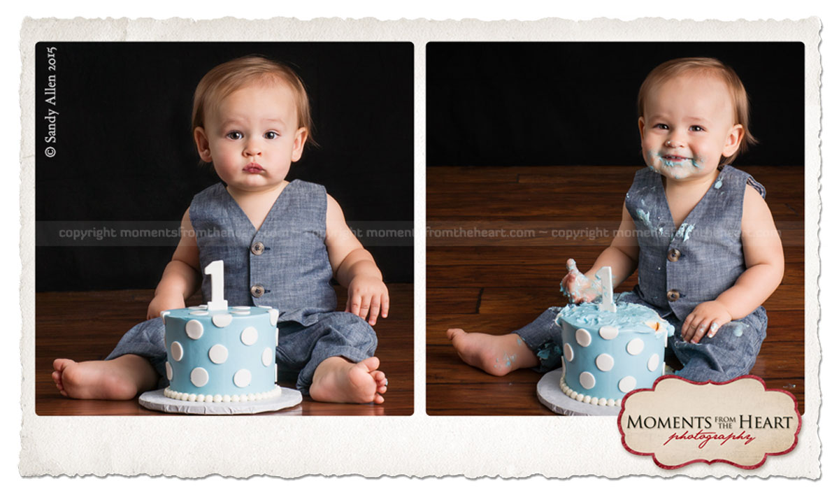 baby first birthday photo session