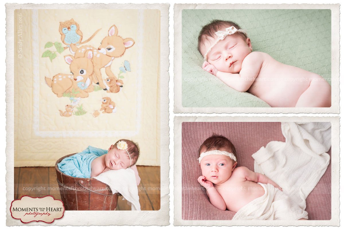 Austin Newborn collage