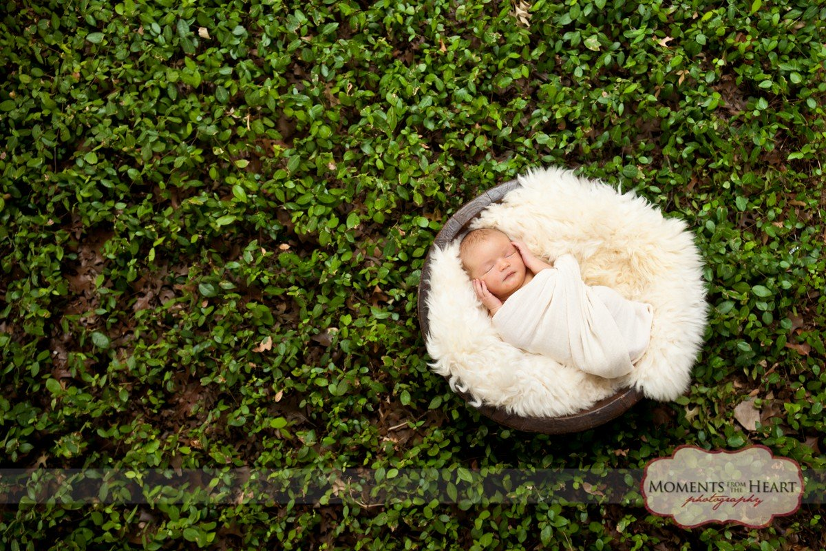 outdoor austin newborn photography