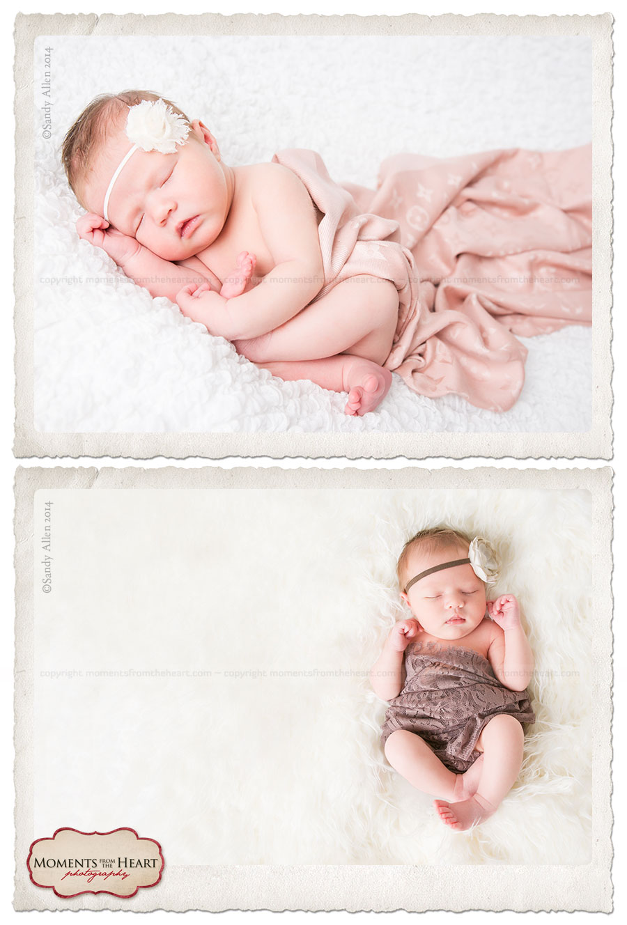 austin newborn studio session