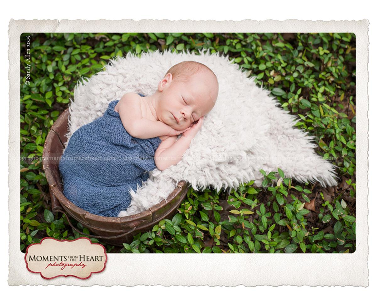 newborn baby sleeping photo session